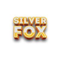 SilverFox Studio